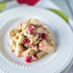 Roasted Cranberry Chicken Salad | paleoonabudget.com