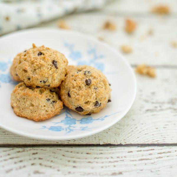 Easy & Yummy Paleo Chocolate Chip Coconut Macaroons